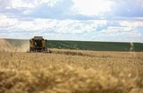 قفزة قياسية جديدة لقيمة الصادرات الزراعية بتركيا (فيديو)